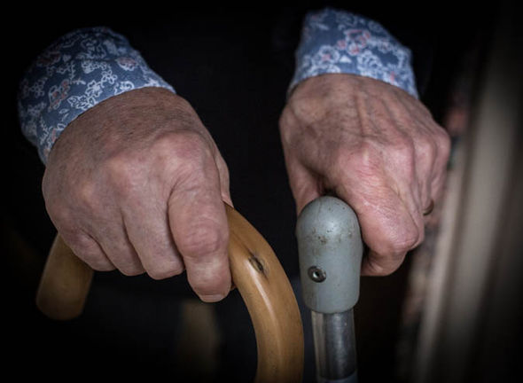 Elderly person holding two walking sticks
