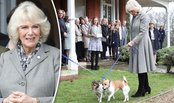 duchess camilla animal rescue visit