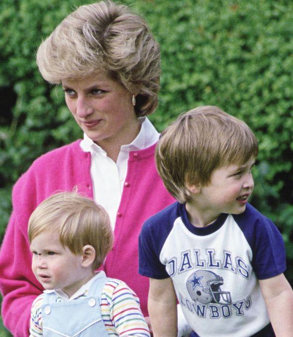 Diana, Harry and William