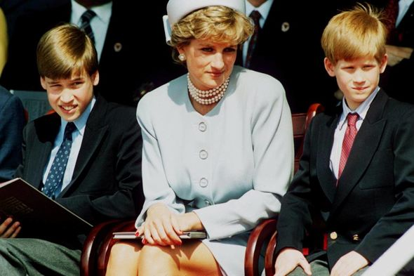 Harry and William both issued statements at the same after the BBC's findings into their mother's interview
