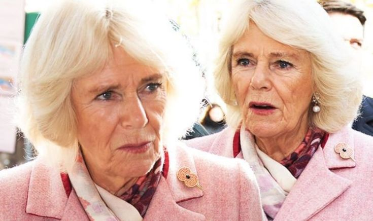 Camilla health scare: Duchess ordered by doctor to cancel engagement with Meghan and Harry