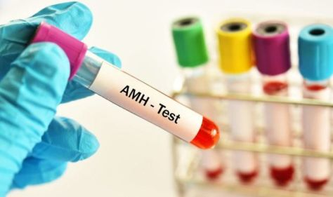 AMH levels by age chart: What is a healthy range? What your AMH levels are telling you