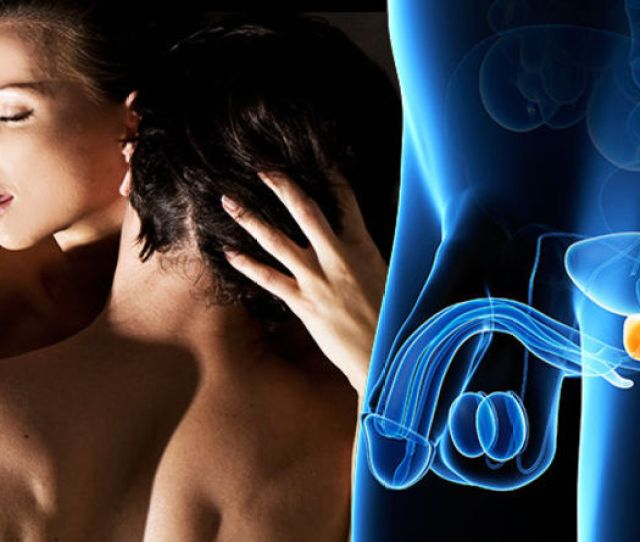 Prostate Cancer Symptoms What Actually Is The Prostate And How Is It Linked To Sex