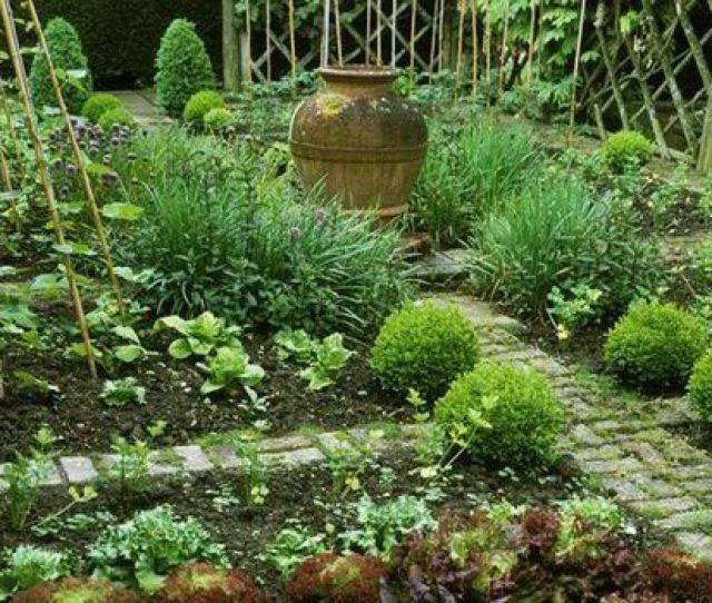 Alan Titchmarsh On Growing Unusual Vegetables Celeriac And Kohlrabi In Your Garden