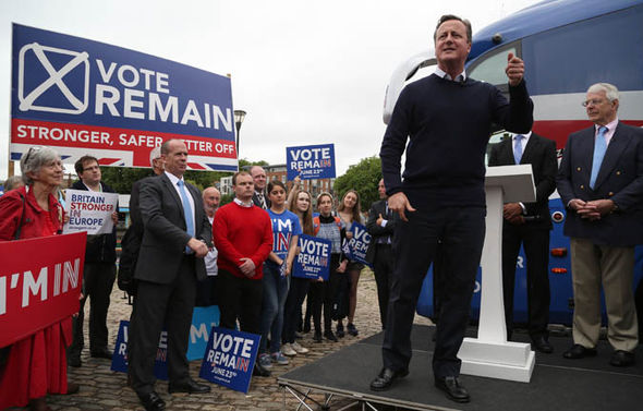 Remain campaign David Cameron