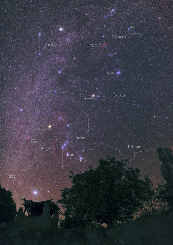 Orionids emerging in the Orion constellation