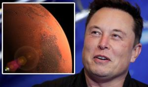 """Elon Musk's Mars plan shook as SpaceX CEO fears people will """"shut themselves down"""" before 2050 