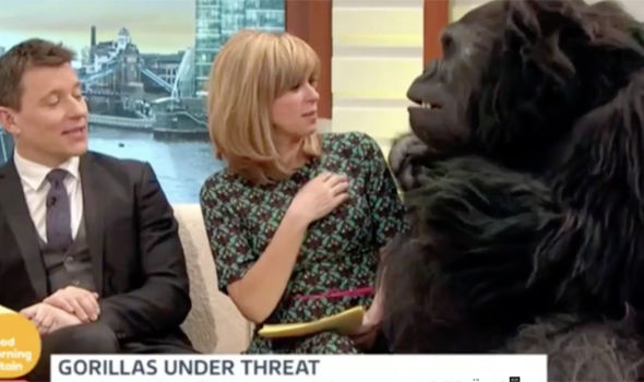 Kate Garraway comes face to face with a gorilla on Good Morning Britain