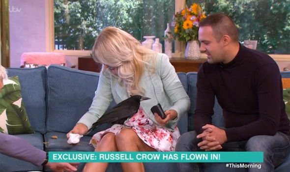 The rook called Russell Crow ended up going to the toilet live on This Morning