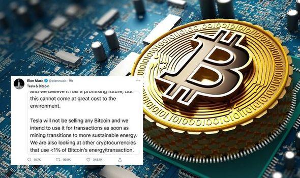 Bitcoin price: Crypto plummets after Elon Musk Tesla tweet - should you buy  Bitcoin?   City & Business   Finance   Express.co.uk