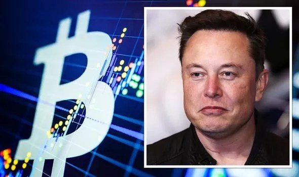 Bitcoin warning: Elon Musk's Dogecoin 'control' will 'not be tolerated' as  DOGE surges   City & Business   Finance   Express.co.uk