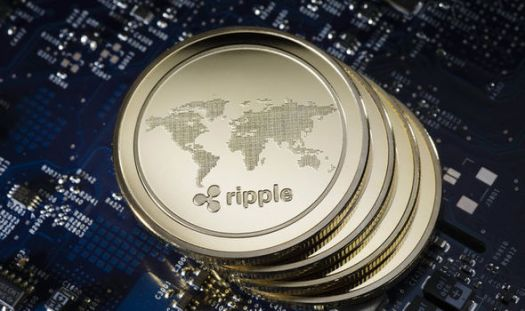 Ripple price news LIVE: XRP could fall further after ...