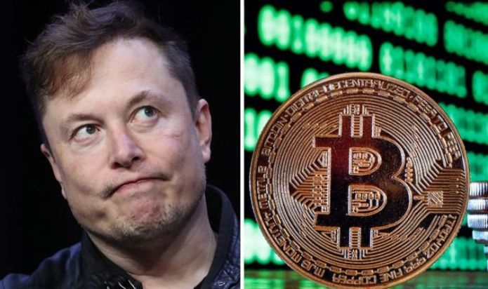 Elon Musk's Bitcoin investment ripped to piece: 'It could have gone either way!'