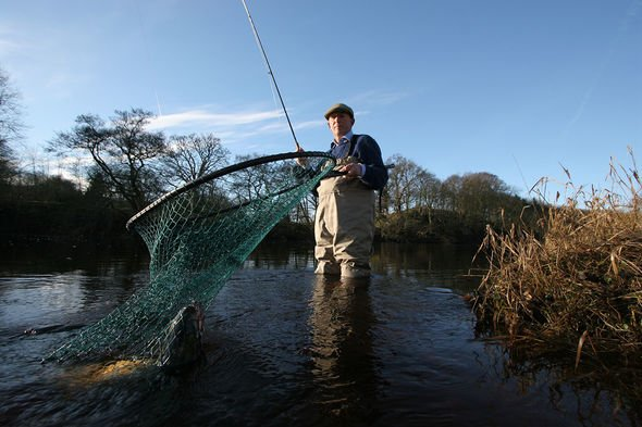 , Father's Salmon Fishing In The Yemen novel inspired Piers Torday to become a writer, The Evepost BBC News