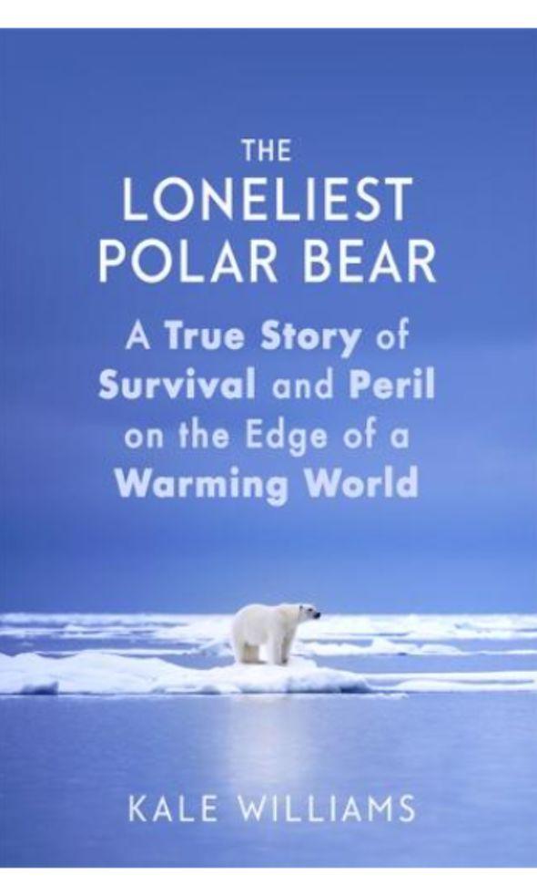 The Loneliest Polar Bear by Kale Williams