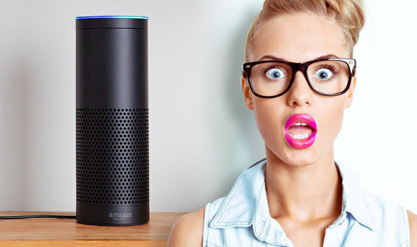 You probably want to restrict who can make purchases with your Echo