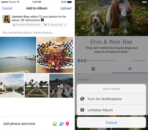 Photos, videos, text posts, statuses, and more, can all be added to an album