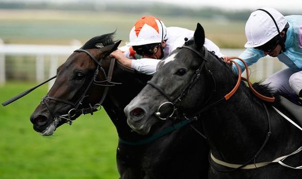 Horse racing tips July 31: Horses you must back at Sandown ...