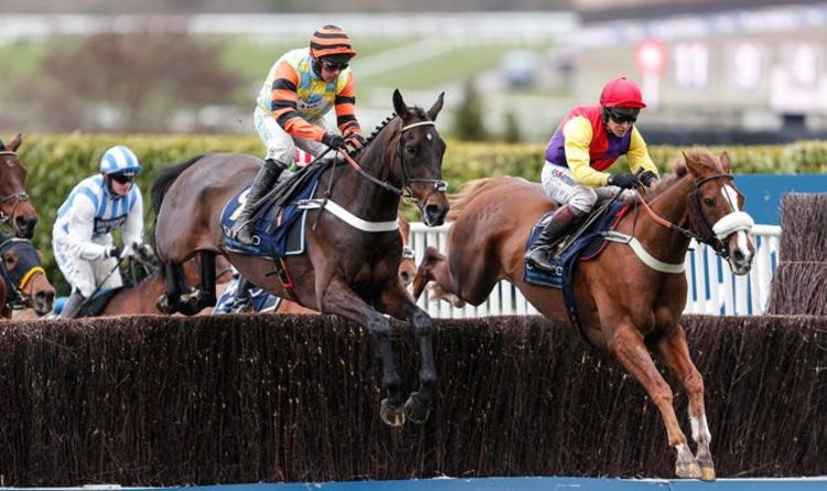 Horse Racing Tips December 14 Horses You MUST Back At
