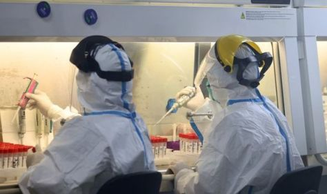 Not again! Author warns another pandemic may occur unless Wuhan mystery is solved