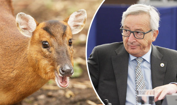 Jean-Claude Juncker European Union deer environment