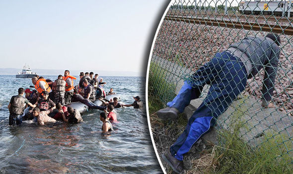 migrants in the past year