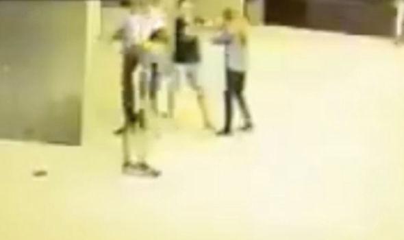 Austria girl attacked
