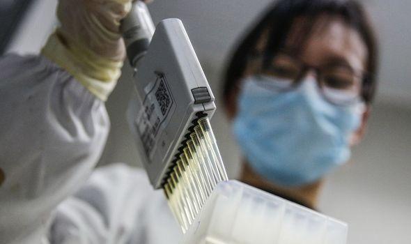Coronavirus: the laboratory studied the strain
