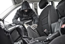 Image result for car thief