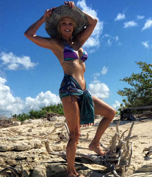 Christie Brinkley in 2016