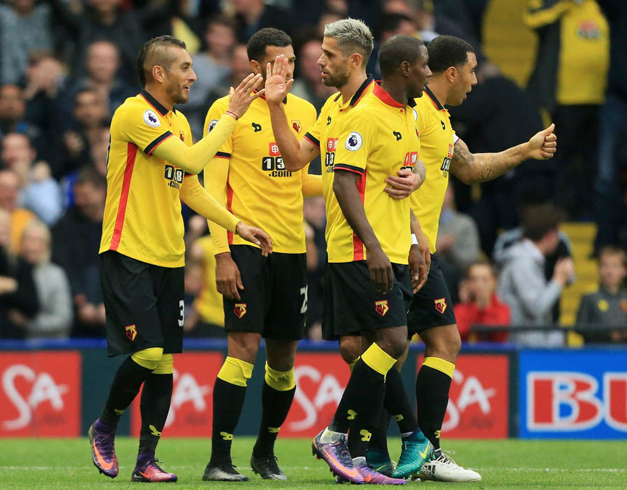 Image result for watford 2017