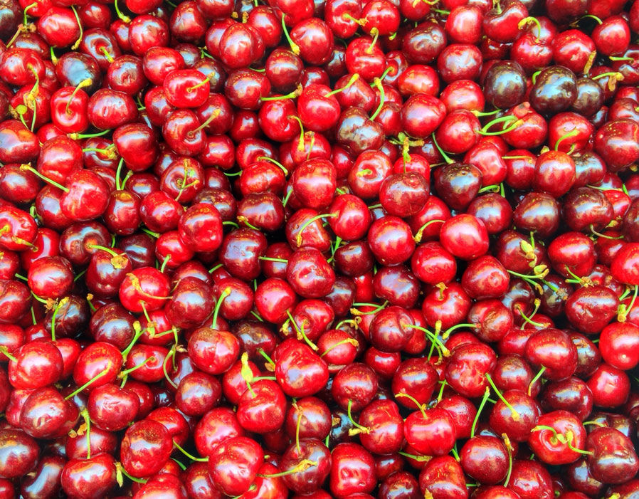Cherries have high sugar levels  EXCLUSIVE: Why do my tomatoes taste of fish? Complaints about foul tasting toms on the up | Weird | News 63931