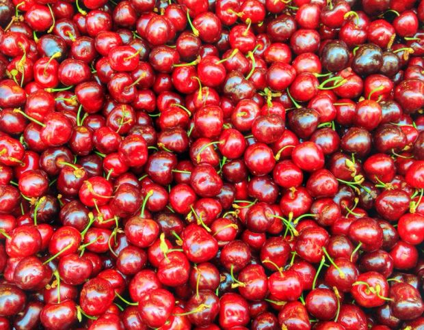 Cherries have high sugar levels