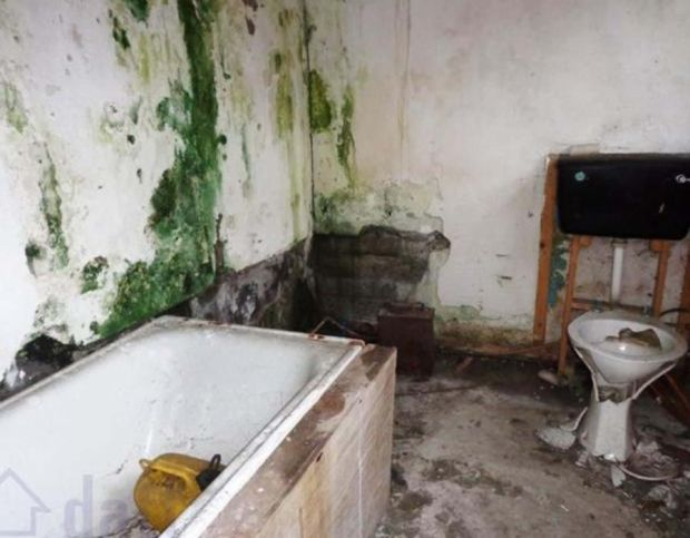 You wouldn't want to step foot in this mouldy damp bathroom, let alone take a dump