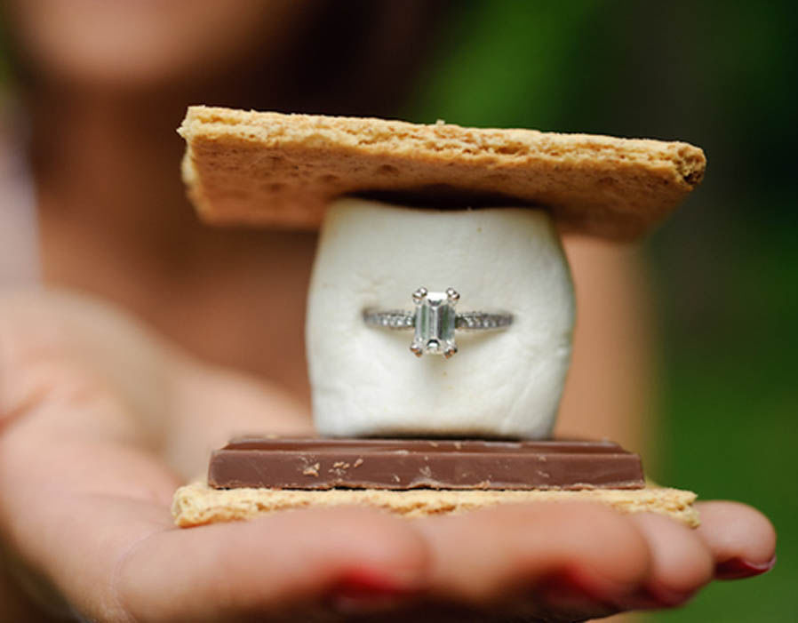 Hilarious Moment ALPACA Photobombs Marriage Proposal