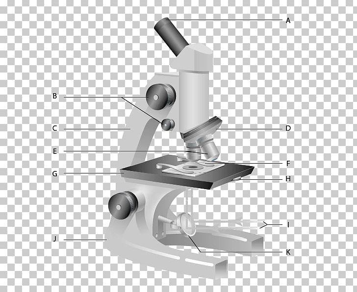 Carl Zeiss Microscopy Optical Microscope Worksheet Diagram