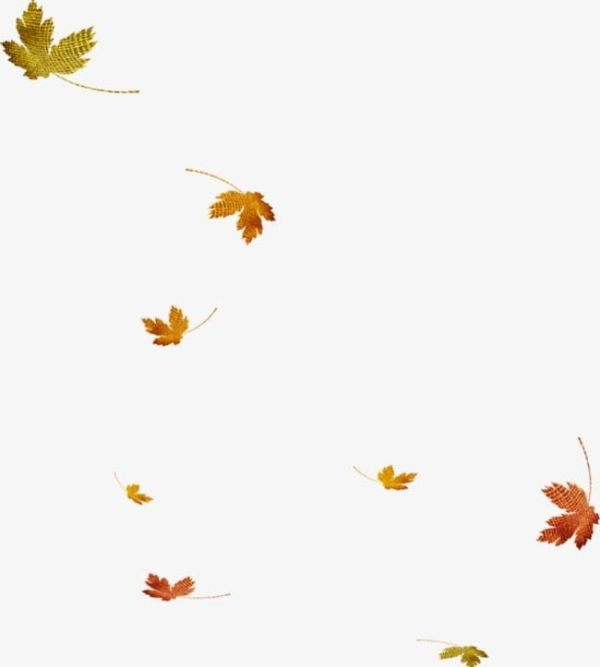 fall leaves png # 12