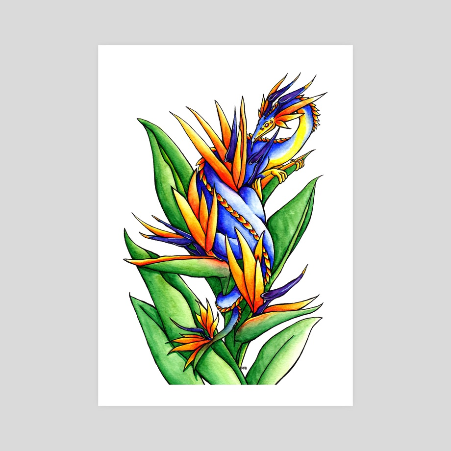 Bird Of Paradise Flower Dragon An Art Print By Delyth Thomas Inprnt