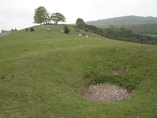 Beacon Hill Bowl Barrow