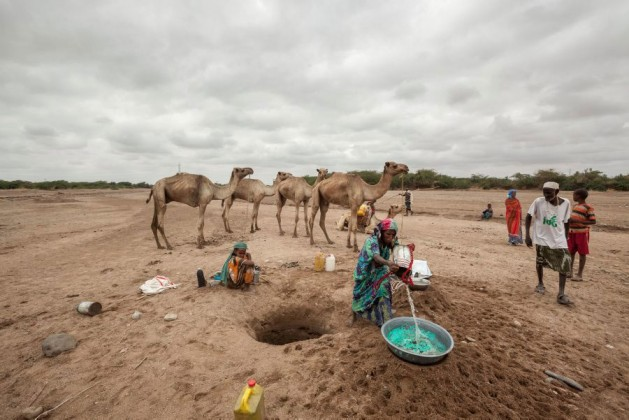 In Somaliland and Puntland, close to two million people are affected by the drought amid the El Niño phenomenon. Somalia is a member of the League of Arab States. Photo credit: WFP/Petterik Wiggers