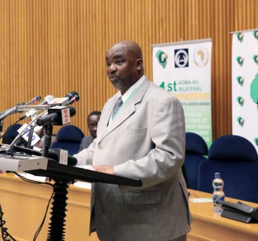 Olabisi Dare, Head of Humanitarian Affairs, Refugees, and Displaced Persons Division at the AU Commission.
