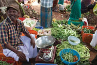 Credit: International Fund for Agricultural Development – IFAD