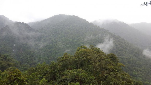 Tapantí National Park lies east from the capital San José covering more than 50.000 hectares of forest, which in turn provides valuable watershed protection. Picture: Diego Arguedas Ortiz / IPS