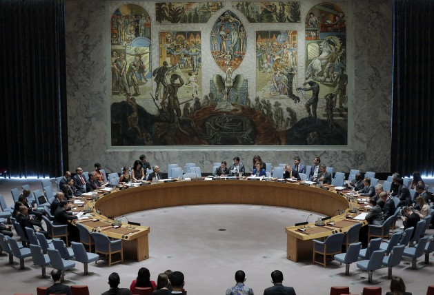 The UN Security Council. Credit: UN Photo/Evan Schneider