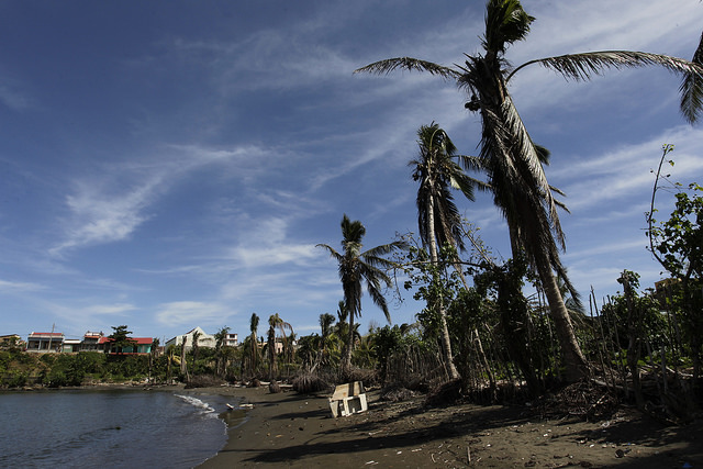 A beach along the coast of Baracoa, where coconut trees were damaged by Hurricane Matthew – a serious problem in this city in eastern Cuba, since coconuts are one of the main local agricultural products. Credit: Jorge Luis Baños/IPS