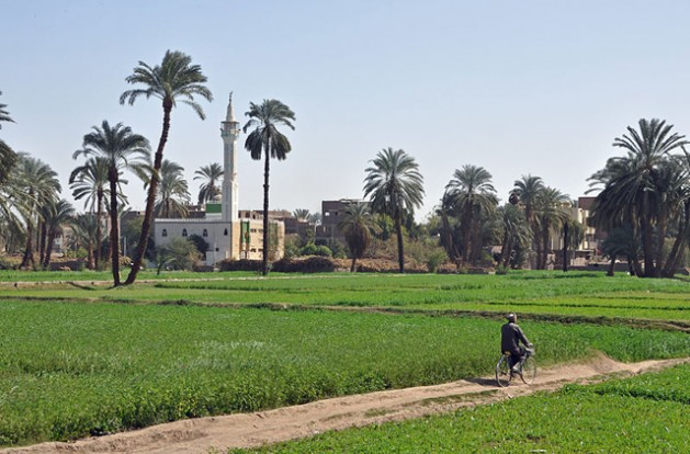 Egyptian countryside south of Luxor, Egypt. In the background: the village of Al Bayadiyah. Photo: Marc Ryckaert (MJJR). Creative Commons Attribution 3.0 Unported license.