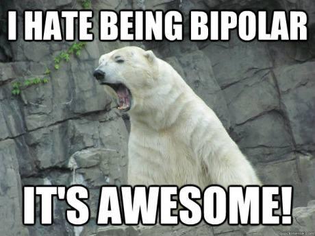 Image result for bipolar bear