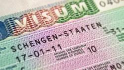 Schengen Visa 20800787