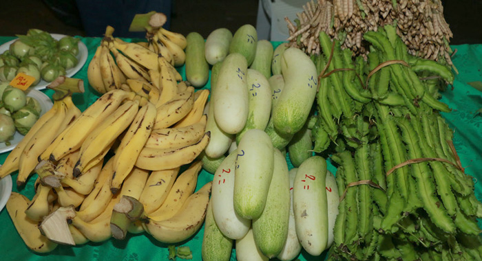 Caricom Has Been Accused Of Not Doing Enough To Celebration The Contribution Of Farm Families. (Photo: Kenroy Ambris/Cta)