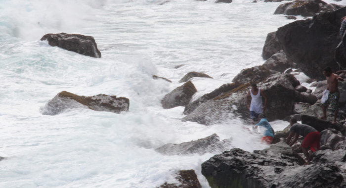A Group Of Men Attempt To Retrieve A Body From The Raging Sea At Rock Gutter On Monday. (Iwn Photo)